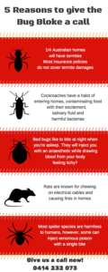 5 Reasons to Call The Bug Bloke Pest Control Sydney